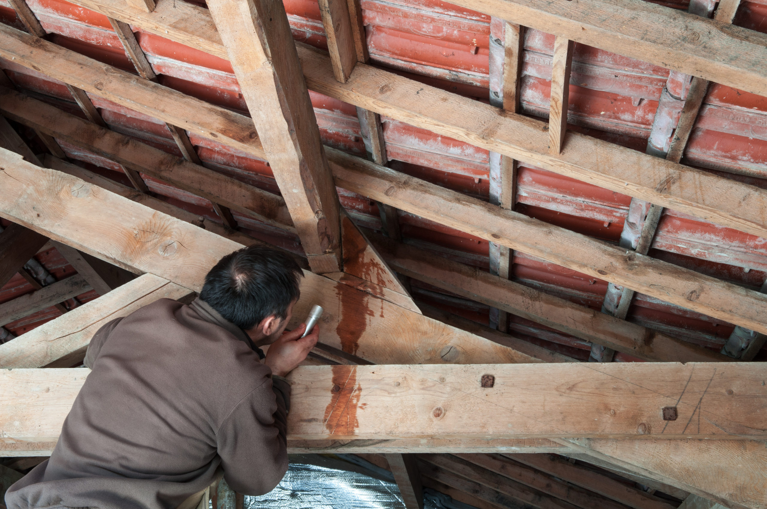 Inspect your roof for leaks